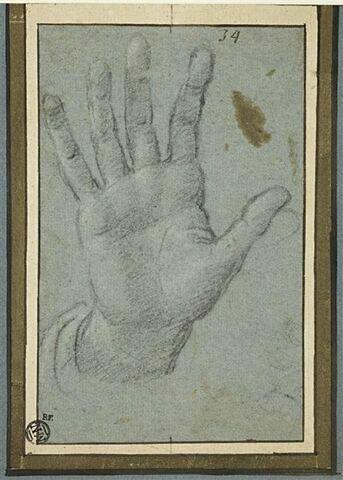 Main droite ouverte