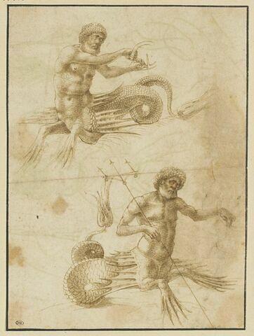 Etude de deux figures de Neptune