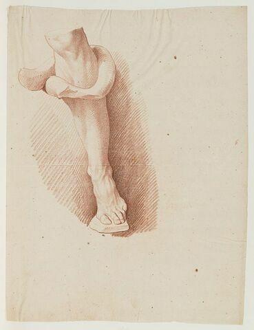 Une jambe de l'un des enfants de Laocoon