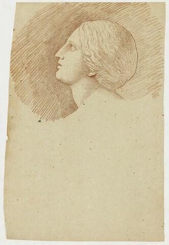 Tête d'une fille de Niobé, vue de profil à gauche