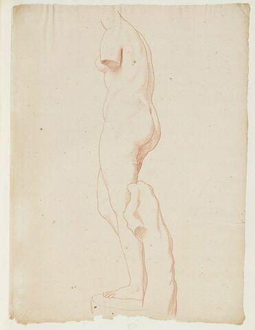 La Vénus Médicis, vue de profil à gauche