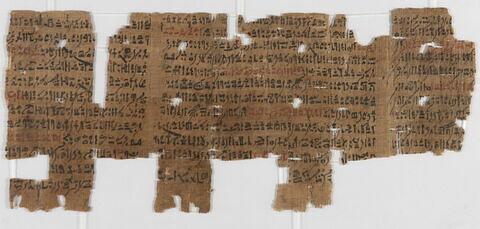 papyrus ; Papyrus de l'Enseignement loyaliste