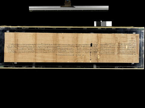 papyrus documentaire