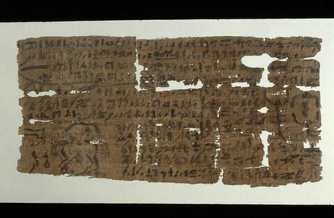 papyrus magique