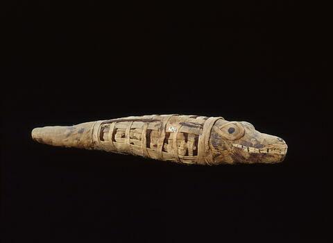 momie de crocodile ; momie d'animal en gaine à tête dégagée
