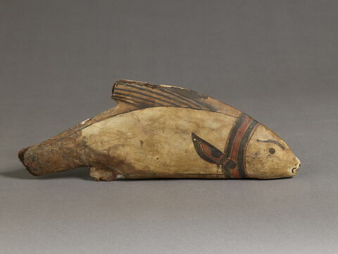 sarcophage de poisson ; momie de poisson