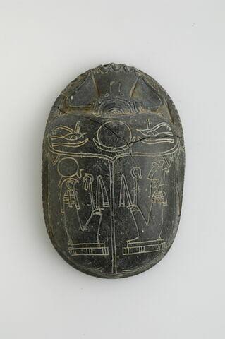 scarabée de cœur ; scarabée funéraire