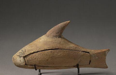 sarcophage de poisson ; cercueil
