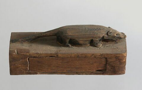 sarcophage de musaraigne ; momie d'animal