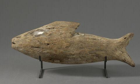 sarcophage de poisson