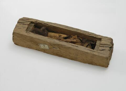 sarcophage de serpent ; élément momifié