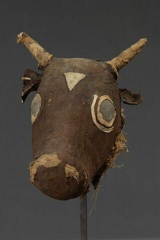 momie de taureau