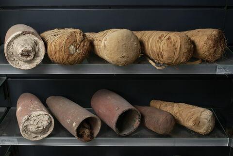 vase ; sarcophage d'animal  ; avec contenu