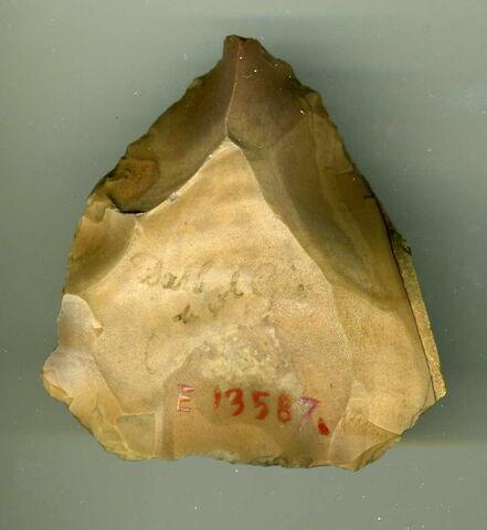 nucleus Levallois