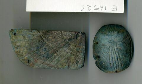 scarabée funéraire ; aile gauche de scarabée funéraire