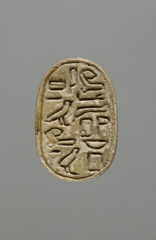 scarabée ; sceau