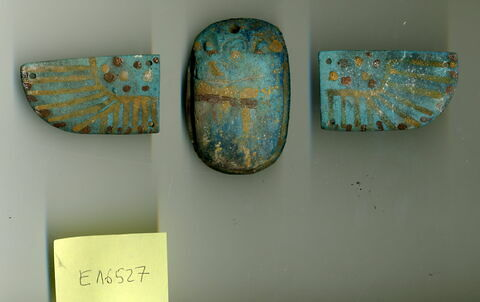 scarabée funéraire ; aile droite de scarabée funéraire ; aile gauche de scarabée funéraire