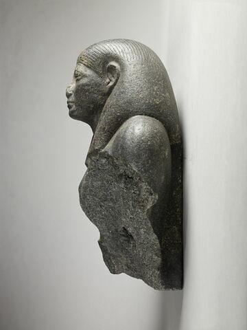 profil gauche © 2013 Musée du Louvre / Thierry Ollivier