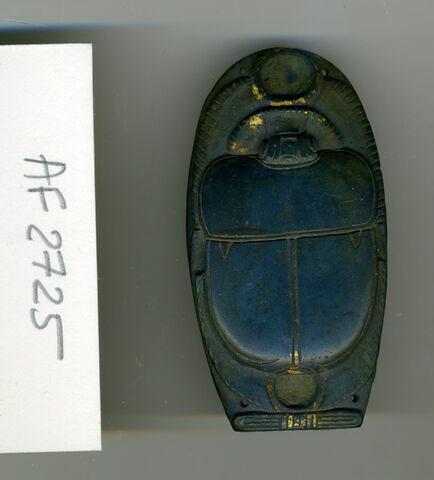 scarabée funéraire