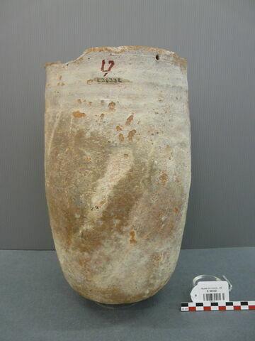 vase  ; sarcophage d'ibis  ; vase canope