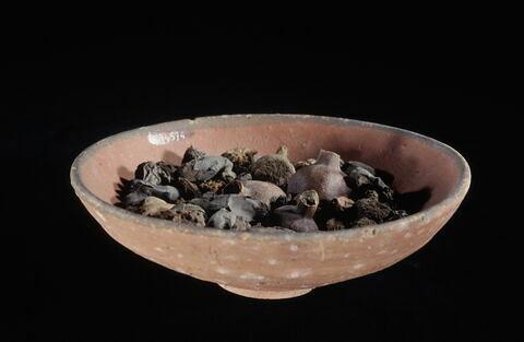 coupe ; grenade ; raisin ; figue de sycomore ; balanite ; datte ; graine de mimusops