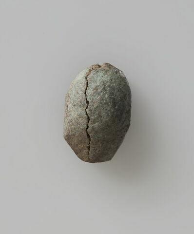 scaraboïde ; scarabée