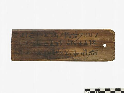 étiquette de momie rectangulaire