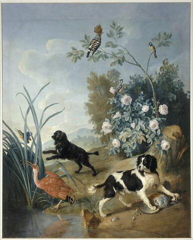 Zerbine et Jemite, chiens de Louis XV. Deux chiens épagneuls, l'un tenant une perdrix, l'autre poursuivant des oiseaux aquatiques