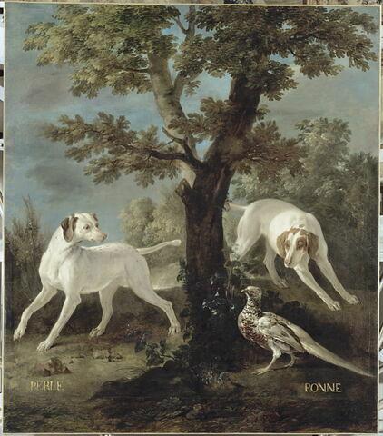 Perle et Ponne, chiennes de la meute de Louis XIV
