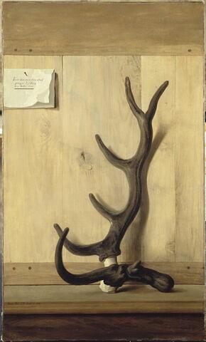 face, recto, avers, avant ; vue d'ensemble ; vue sans cadre © 2003 RMN-Grand Palais (musée du Louvre) / Gérard Blot