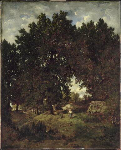 Village sous les arbres