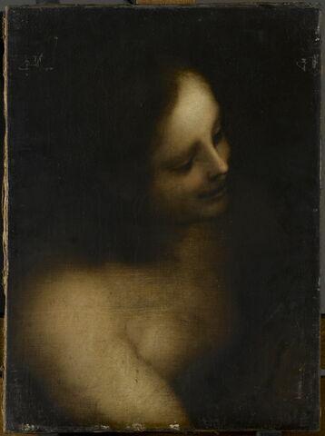 Femme dénudée vue en buste