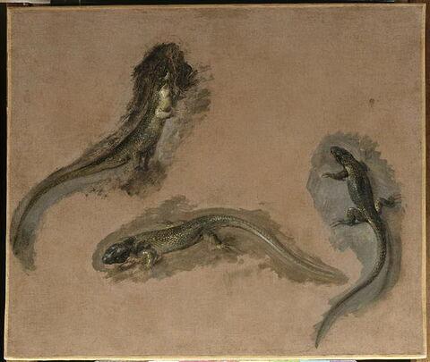 face, recto, avers, avant ; vue d'ensemble ; vue sans cadre © 1989 RMN-Grand Palais (musée du Louvre) / Christian Jean