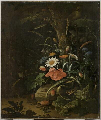 Fleurs, oiseaux, insectes et serpents, souris, lézard et grenouille