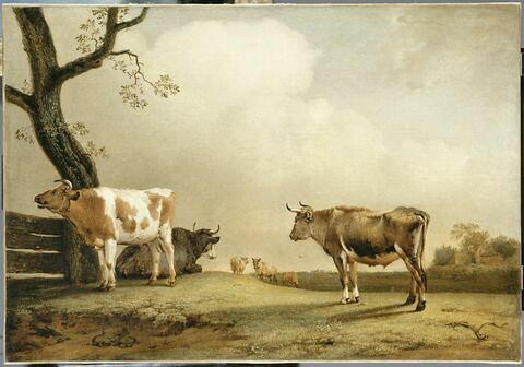 La Prairie ou Trois bœufs dans une vaste prairie