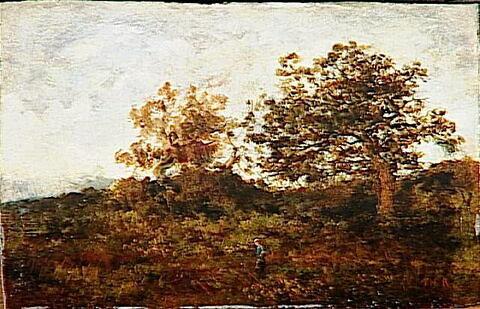 face, recto, avers, avant ; vue d'ensemble ; vue sans cadre © 1993 RMN-Grand Palais (musée du Louvre) / Hervé Lewandowski