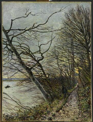Le bois des Roches, Veneux-Nadon.