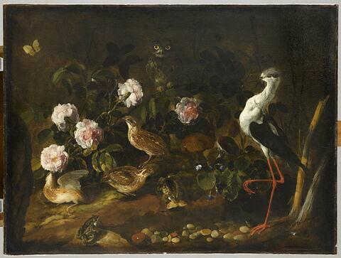 Nature morte avec des cailles, un hibou et une échasse blanche