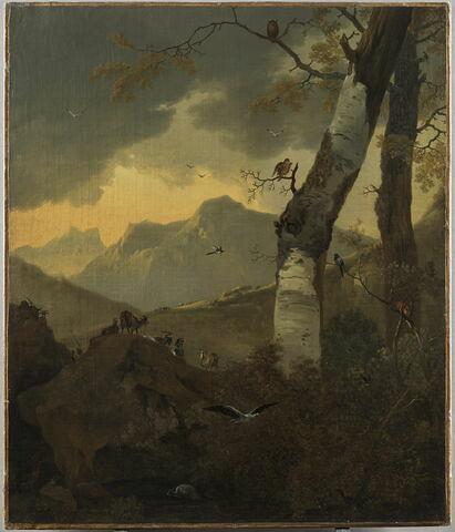 Paysage montagneux aux arbres et aux oiseaux, reptiles, batraciens et autres animaux