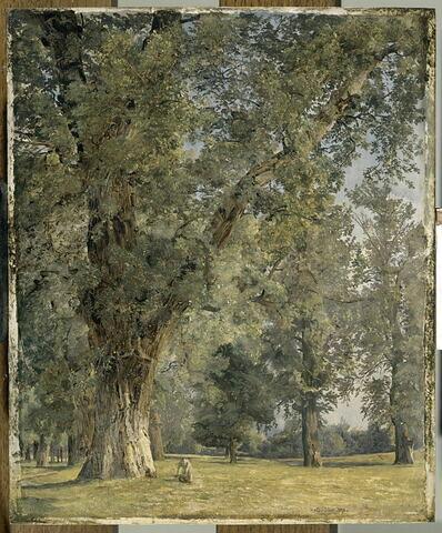 Vue du Prater à Vienne, avec arbre à gauche