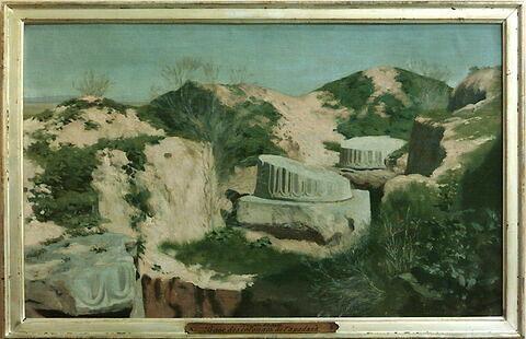 Ruines de Suse. Base des colonnes de l'Apadanà.