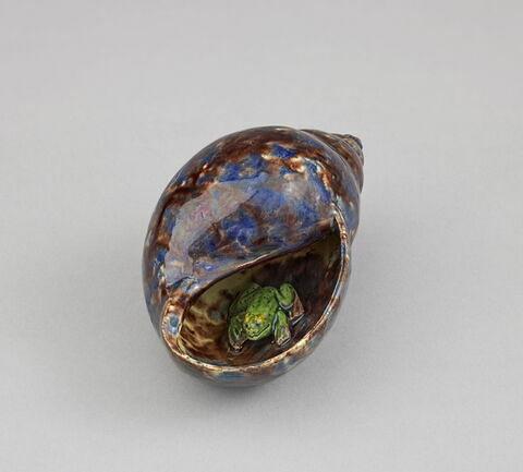 Coquillage jaspé contenant une grenouille