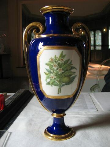 Paire de vases ovoïdes et anses dorées.