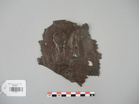 bouclier ; fragment