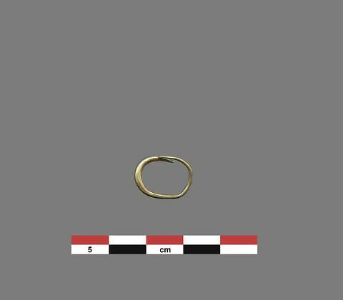 boucle d'oreille ; anneau