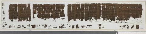 papyrus ; Papyrus médical