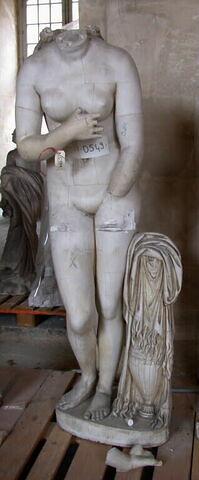 moulage ; statue ; Venus du Capitole