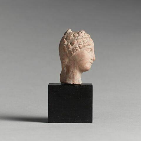 profil droit © 2013 RMN-Grand Palais (musée du Louvre) / Tony Querrec