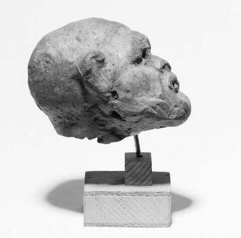 profil © 2007 Musée du Louvre / Patrick Lebaube