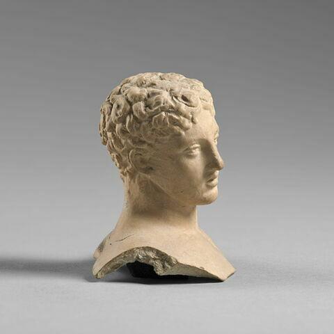 © 2015 RMN-Grand Palais (musée du Louvre) / Tony Querrec